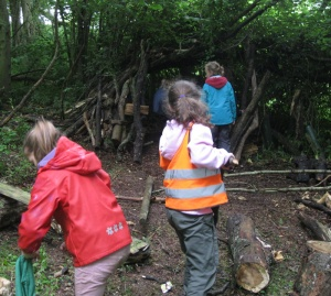 Den building activity